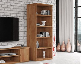 Wide bookcase VENTO